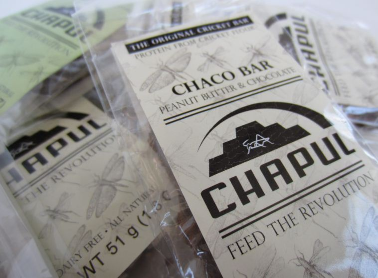 Chapul Looks to Introduce Insects into the American Diet