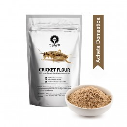 Cricket Powder 1kg Acheta Domestica