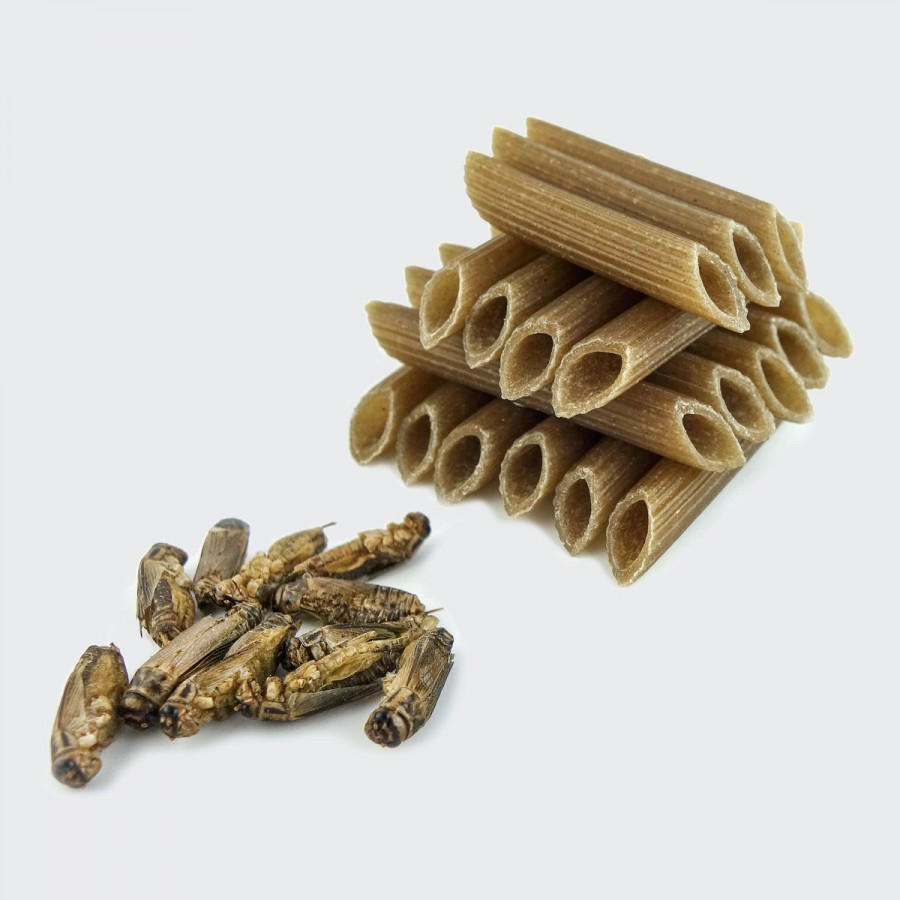 Cricket Pasta - Gluten Free!