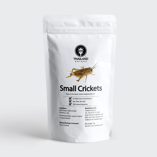 Edible Crickets - Acheta Domesticus